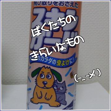 CIMG0673-1_20100826194722.jpg