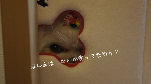 N5gFm.jpg