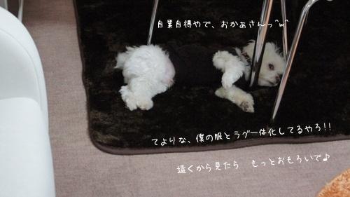 ONawN_20110119200307.jpg