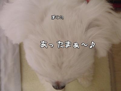 W4x2R.jpg