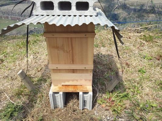 20120410蜂の巣箱