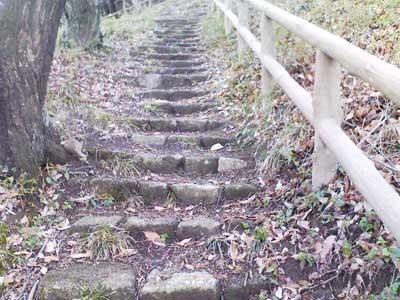 伊勢原運動公園の石段