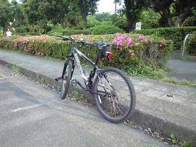 20100604夕方ポタリング