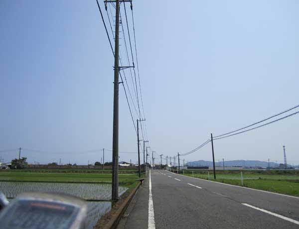 20100612平塚田んぼの中