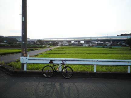 20100720下大槻の田んぼ