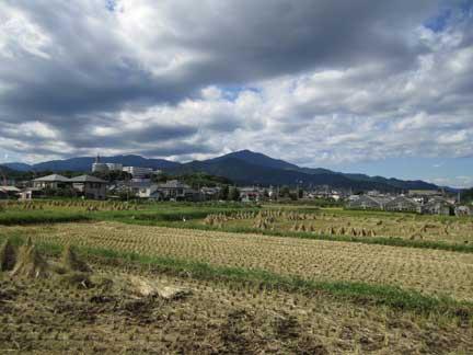 20100925田んぼ