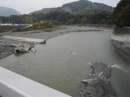 20101114酒匂川の様子