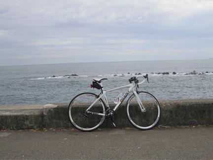 20101121湯河原の海