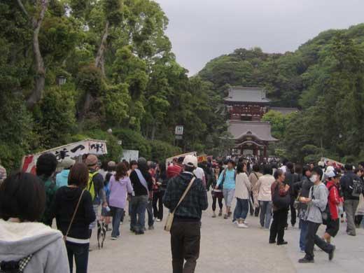 20110503鎌倉鶴岡八幡宮