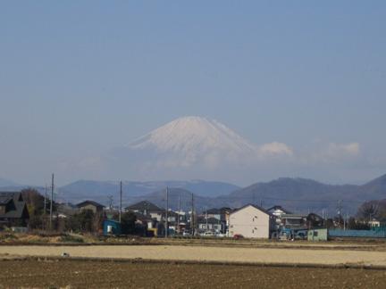 20110122今日の富士山