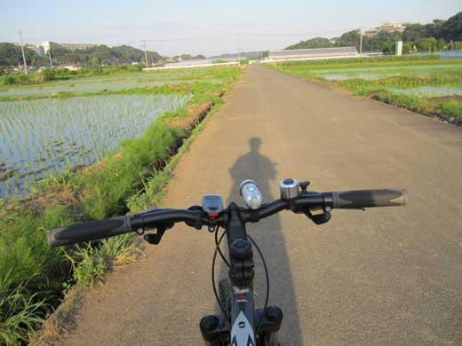 20110621いつもの?田んぼ道で長い影