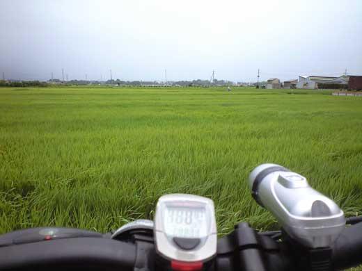 20110731ROC5000田んぼの上を走ってみたい!?