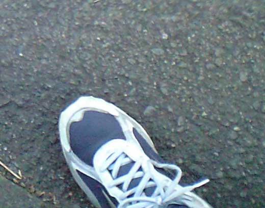 20110822散歩