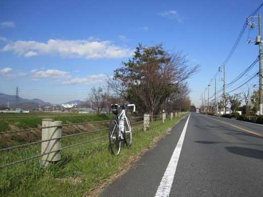 20111126道は続くよDEFY