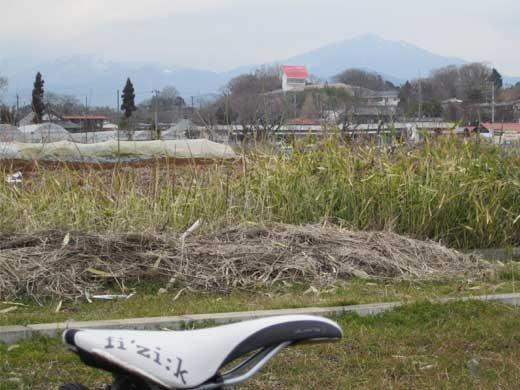 20120303山には雪が・・・
