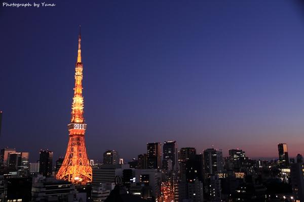 東京タワーFC2-3