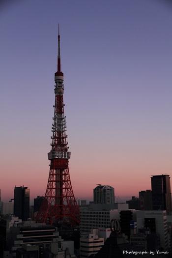 東京タワーFC2-2