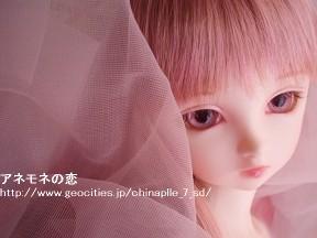 P3200013-100320.jpg