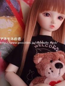 P5040002-100504.jpg