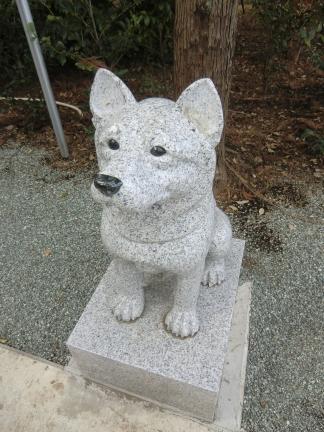 024駒犬