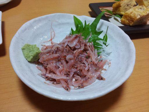 桜エビ①20130613