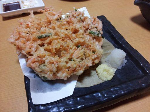 桜エビ②20130613
