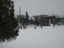 公園では少年たちが雪中サッカー♪