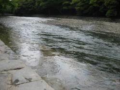 きれいな流れの五十鈴川