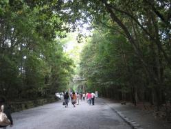 森林浴って感じです(*^_^*)
