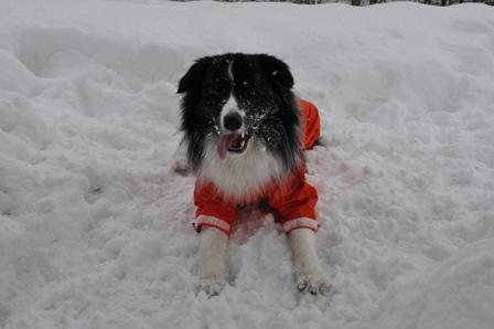雪遊びは楽しいな