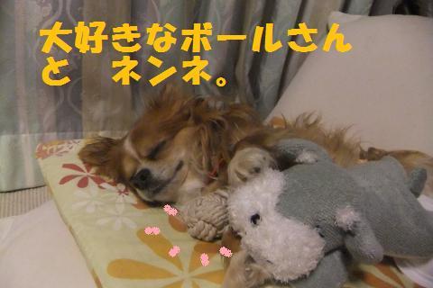 003_convert_20100509050454.jpg