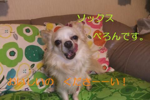038_convert_20100503063854.jpg