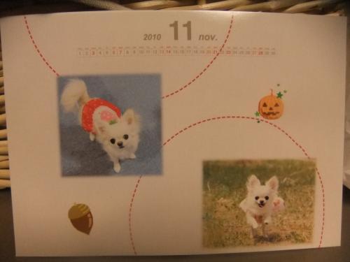 このたんカレンダー
