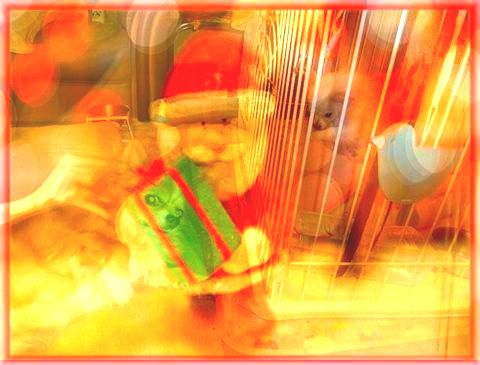 クリスマス加工