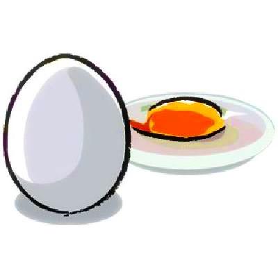 卵イラスト加工