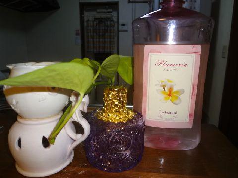 ワン用アロマセット