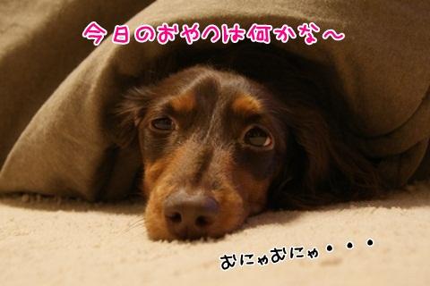 018_20120226072708.jpg