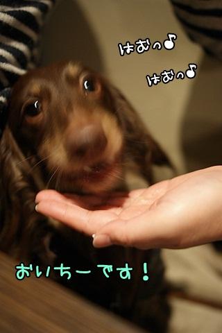 039_20120301204407.jpg