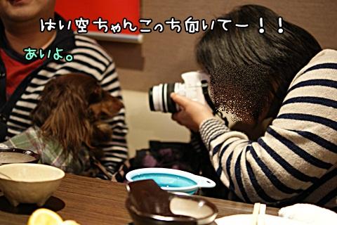 051_20120301205437.jpg