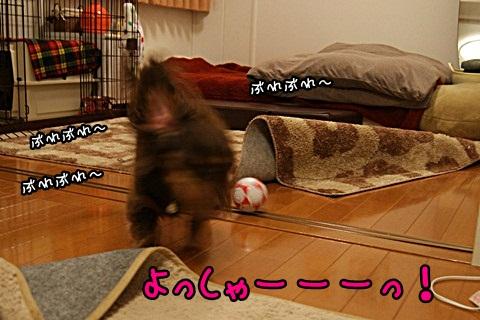 059_20120313224451.jpg