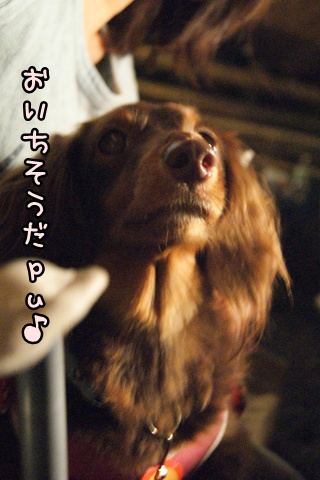 画像 377
