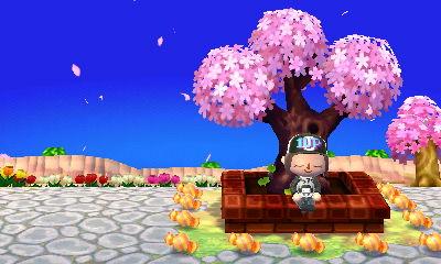 広場の木も