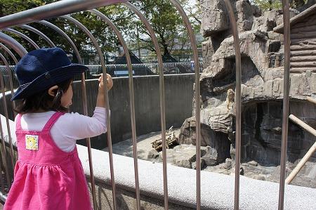 動物園 007