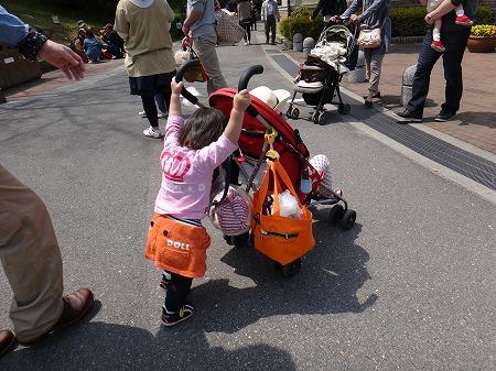朝動物園 025