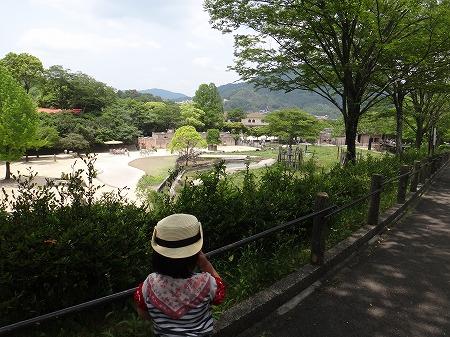 広島 018