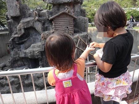 動物園 017