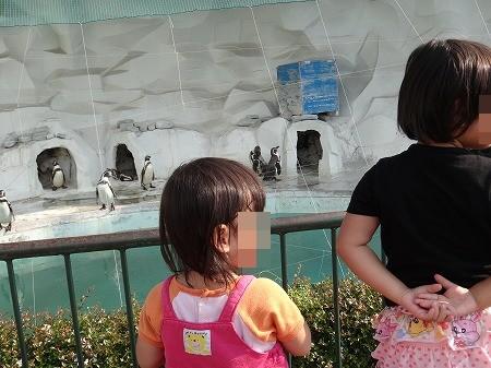 動物園 024