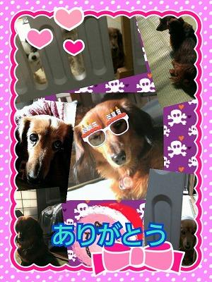 s-2013-12-22-23-09-50_deco.jpg
