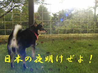 豺。霍ッ蟲カ+049_convert_20110920220538