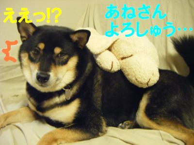 螳カ縺ョ荳ュ・・043_convert_20111023093631